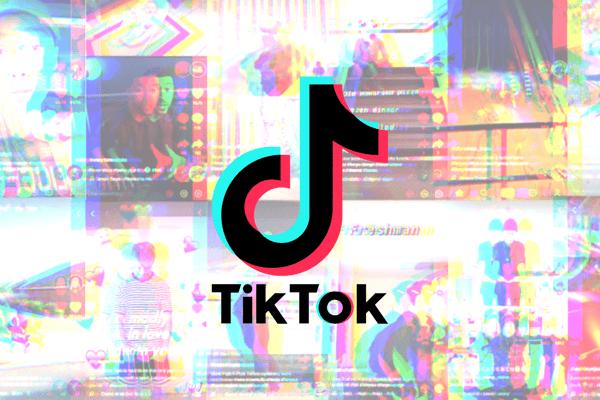 Brief History of TikTok