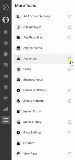 click the More Tools Icon and click Audiences